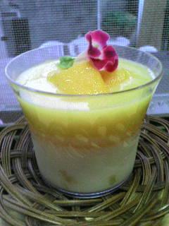 mango-zelly2